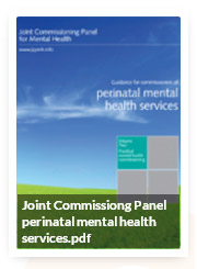 Joint-Commissiong-Panel-perinatal-mental-health-services