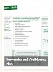 pdf-NICE-endorsed-plan