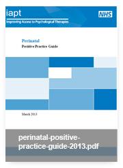 perinatal-positive-practice-guide-2013