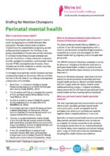 Centre for Mental Health Briefing Paper for Mental Health Champions