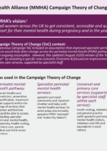 MMHA Everyone's Business Campaign Theory of Change