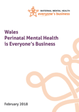 Wales Perinatal Mental Health Briefing